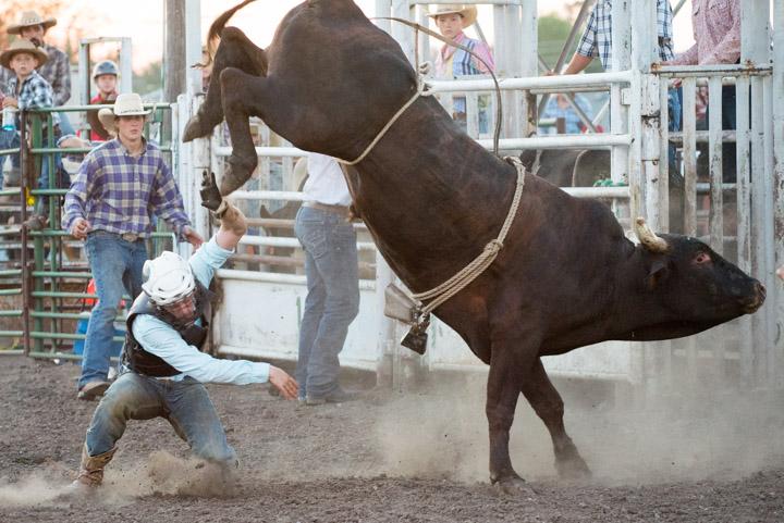 Rodeo JOCO_11106