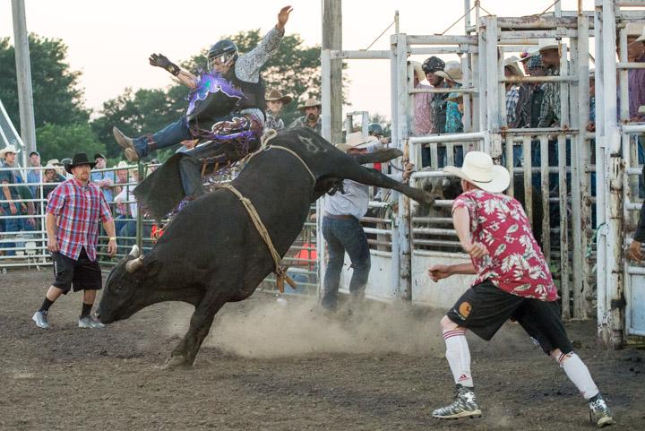 Rodeo JOCO_11153